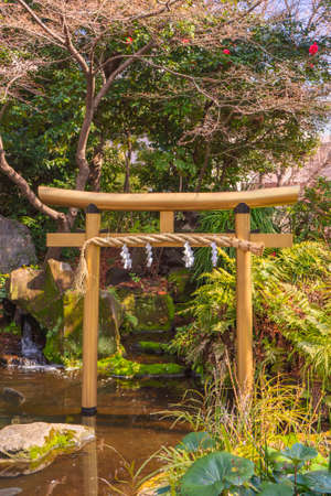 tokyo, japan - march 05 2020: Golden torii gate decorated with a shimenawa rope in the basin of the Atago sanctuary in front of the sacred spring water cascade where in 940 Prince Minamoto no Tsunemoto would have performed a Shinto rite of purification by