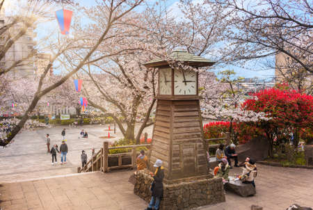 tokyo, japan - march 30 2020: Rays of the sun through the branches of the Somei Yoshino Cherry blossoms trees overlooking the clock tower of Asukayama park where people enjoy Hanami Spring Festival.