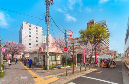tokyo, japan - April 07 2020: Small Japanese neighborhood police station named Koban in front of the Someiyoshino Sakura Memorial Park with cherry blossoms at the North exit of Komagome station.