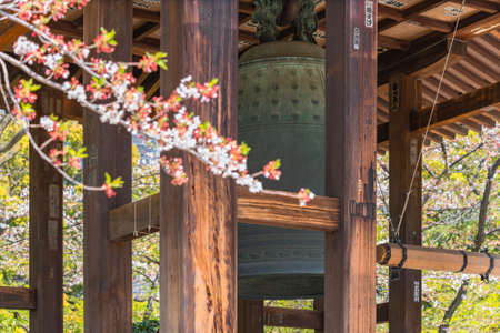 tokyo, japan - march 31 2020: Pillars of a buddhist shoro tower with an hanged bonsho bell surrounding by cherry blossoms branches in the Zojoji Temple famous as a funeral temple of Tokugawa shoguns.