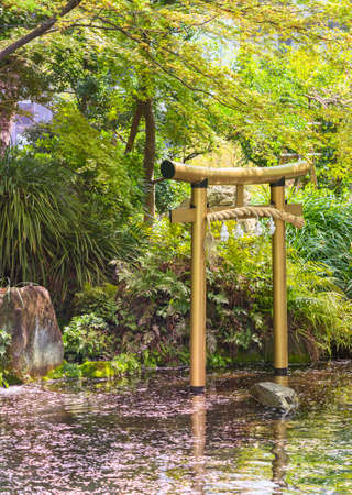 tokyo, japan - march 25 2021: Golden torii gate adorned with a shimenawa straw rope in the pond of Atago shrine covered with fallen cherry blossoms petals and dedicated to benzaiten goddess of water.