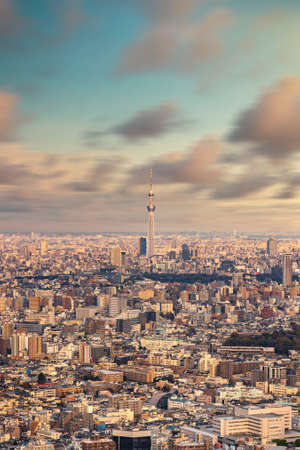 Aerial long exposure photography of the city of Tokyo with the skytree tower in the center at sunset. Stock fotó