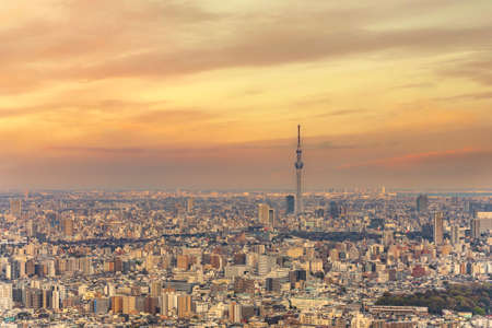 Panoramic view of Tokyo city which skyscrapers are overlooked by the Japan tallest building skytree tower at sunset.