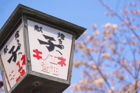 tokyo, japan - april 07 2021: Close up on an offering lantern named kentou with an advertising for Kinoene Soy Sauce against a cherry blossoms bokeh background in the Daikokujinja shrine of Komagome.