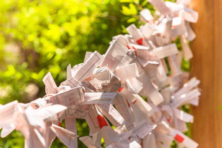 Close up on Shinto o-mikuji fortune strip papers folded on a wooden omikujikake in a shrine of Tokyo.