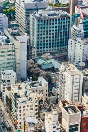 tokyo, japan - april 25 2021: Bird's-eye view of the skyscrapers of Shiba-Shinmei Shopping Street dedicated to the name of the Shiba-daijingu Shinto Shrine surrounded by cherry blossoms. Editöryel
