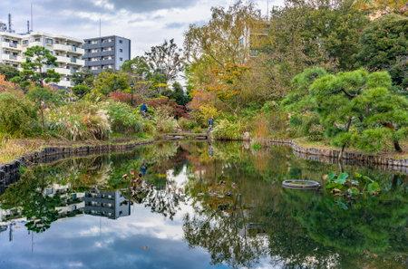 tokyo, japan - november 13 2020: Reflection of the Japanese Mukojima-Hyakkaen Gardens of higashi-mukojima bordered by maiden silvergrass flowering plant in the water of the pond.