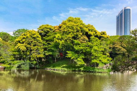 tokyo, japan - may 03 2021: Japanese Oizumisui pond with in its center a tiny Shintoist Hokora shrine dedicated to one of the seven lucky gods the goddess Benzaiten in the Koishikawa Korakuen Park.