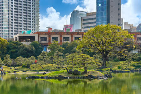 tokyo, japan - april 06 2019: Ukishima or floating island in the pond Oizumisui of the Japanese Kyu-Shiba-Rikyu garden with the pedestrian deck and observatory of this National designated scenic spot. Editöryel