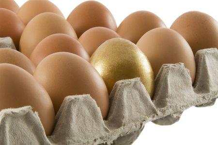 over packed: Un oro e molti ordinaria rurale uova fresche confezionate in contenitori di cartone isolato su sfondo bianco