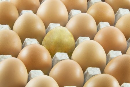 One golden egg with many ordinary fresh rural eggs packed into cardboard container photo