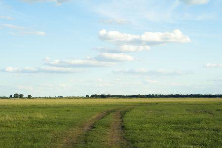Desert road to horizon and deep blue sky photo