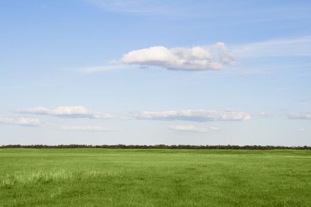 Green grass meadow, the blue sky and white clouds Stock Photo - 5754803