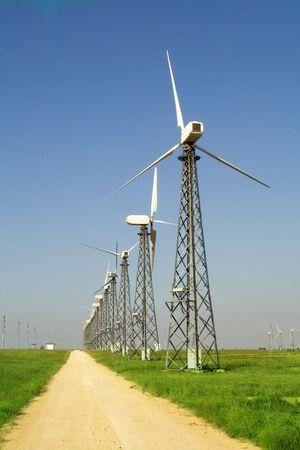 Wind farm turbines in green field over blue sky Imagens
