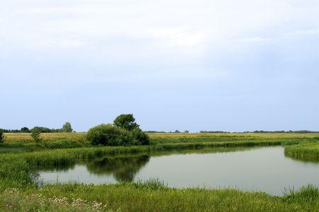 Summer rushy lake panorama view Stock Photo - 5771395