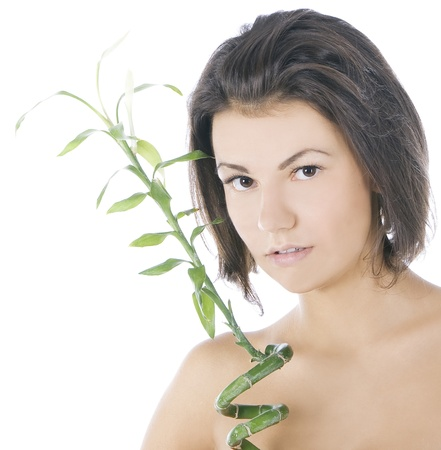 picture of attractive brunette with bamboo over white photo
