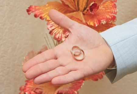 Gold wedding rings on a hand of the groom Stock Photo - 13019792