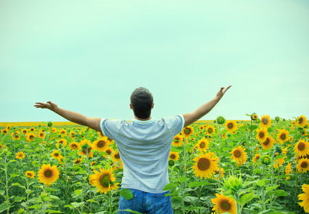 Man in the field of sunflowers photo