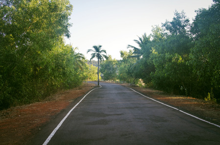 speedway park: Empty road in Goa India at sunny day