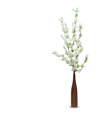 zen interior: White sakura in the pot over white