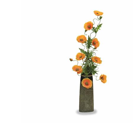 Orange poppy flower in a pot isolated over white Stock Photo