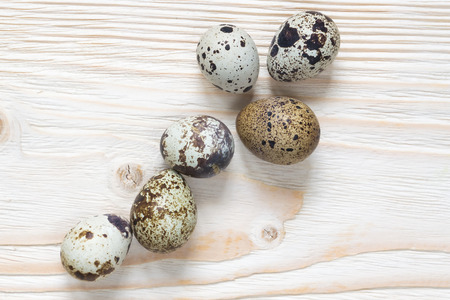 codorniz: seis huevos de codorniz Foto de archivo