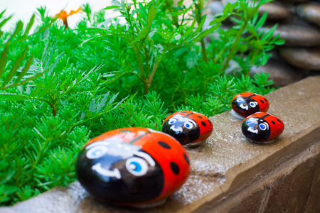ladybugs on a walk