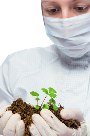 protects: scientist protects plant in hands