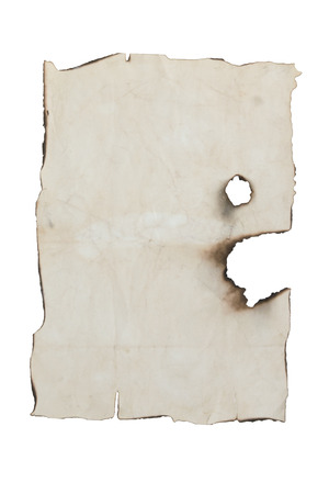 severely: old severely burned leaf on a white background Stock Photo