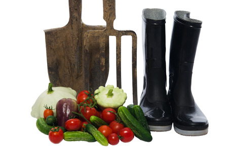 shovel with a pitchfork stands next to a basket of vegetables Stock Photo
