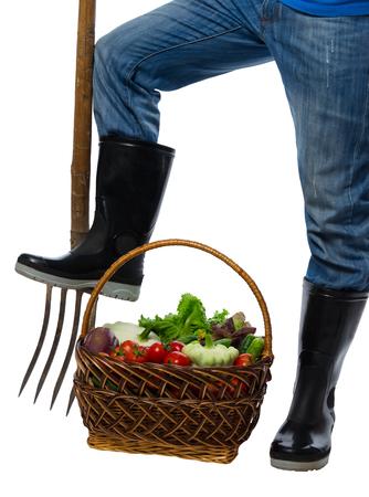 fertile: on a white background vegetables harvested in the basket using fork