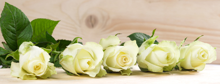 Many white roses lie on a wooden table Stock Photo