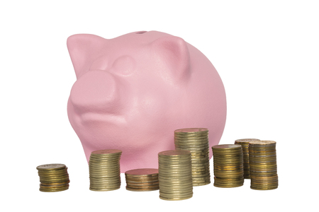 thrifty: Pink piggy bank and stacks of coins in front of her on a white background