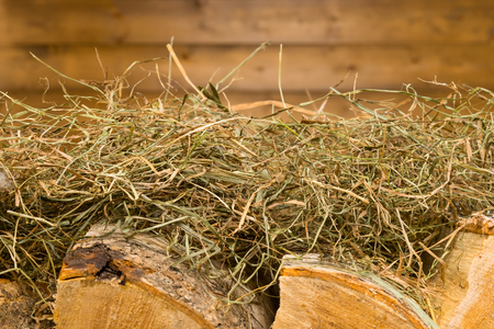 Background with a wooden wall with firewood lying on a hay Stock Photo
