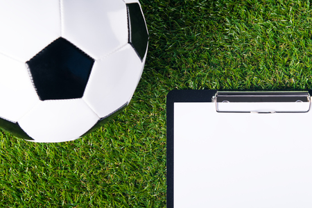 soccer goal: The ball for playing football lies on a green lawn, as a background and there is a place for recording the result