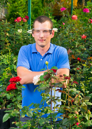 insecticidal: The farmer in glasses smiles, in a flower greenhouse Stock Photo