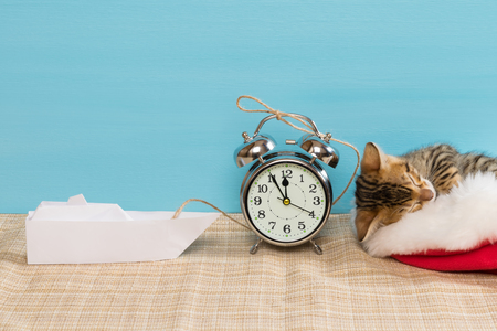 christmas pussy: kitten in a red hat is sleeping, next to an alarm clock and a paper boat Stock Photo