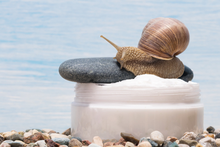 slime snail cream for spa, on a blue background close-up