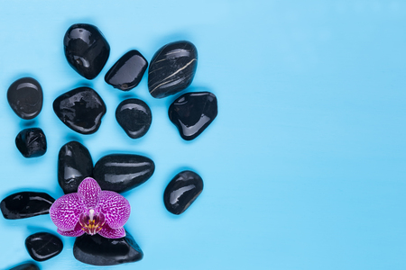 Black stones with a pink flower on a blue background