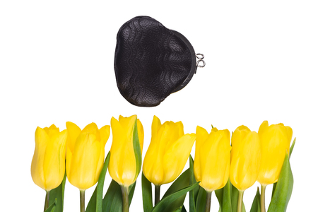 isolated yellow tulips, next to a coin purse Stock Photo