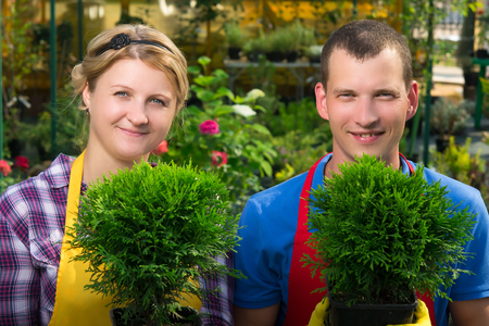 gardeners holding green plants in pots