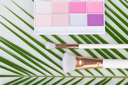 on a white background, close-up, green palm leaf, which are colored shadows for makeup and brushes Stock Photo