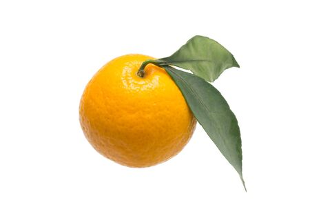 fruit, tangerine, on a green branch, on a white background, close-up