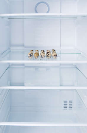 quail eggs in a tray, in the refrigerator on a glass shelf, on a white background Standard-Bild