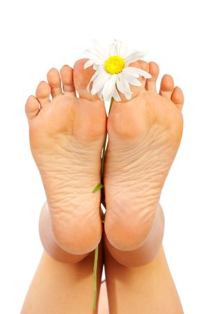 Beautiful woman feet. Isolated over white background