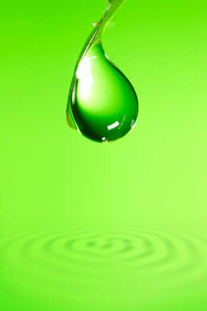 a bud  a sprout  a shoot: water drop on the fresh shoot above pure water  Stock Photo