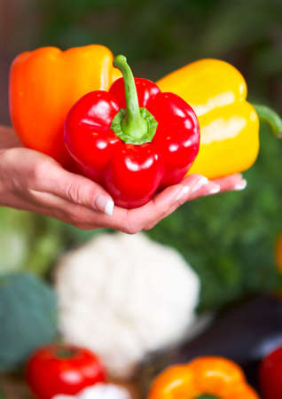Young woman hands holding vegetables