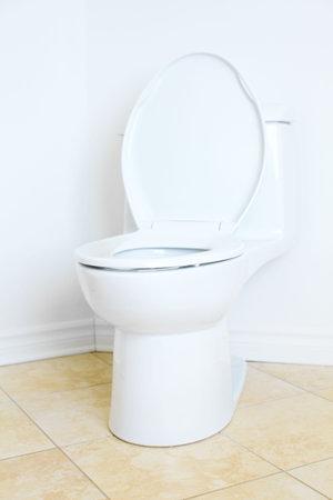Modern flush toilet. Bathroom Stock Photo - 6574014