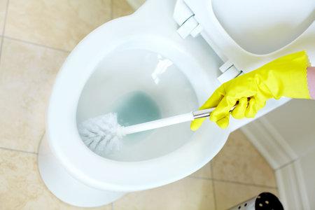 Modern flush toilet. Cleaning Stock Photo - 6574036