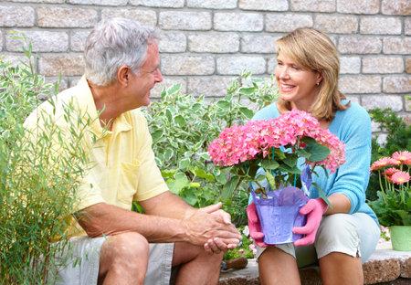 幸せな高齢者高齢者のカップルの園芸家の近くの笑みを浮かべてください。